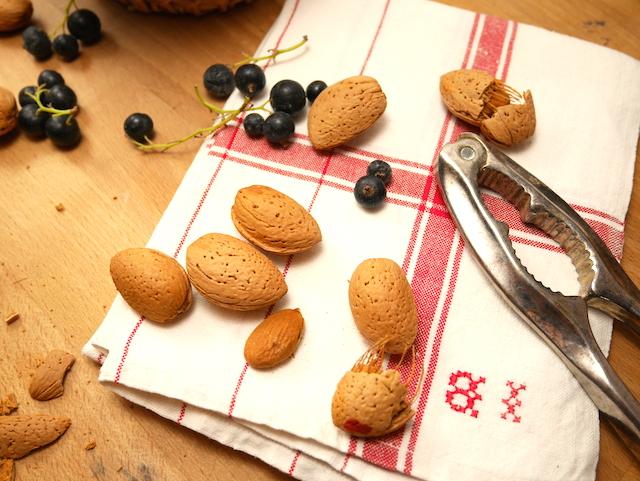 fruit d'automne amandes