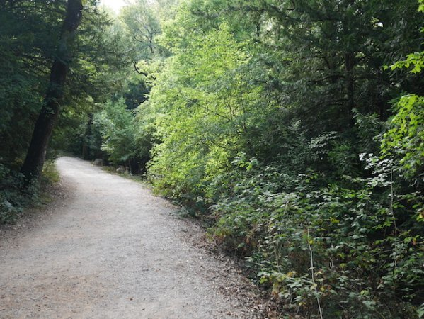 Sainte Baume chemin de Roys